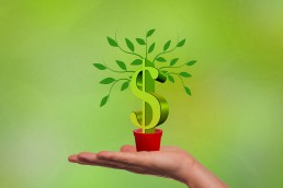 paid-up capital